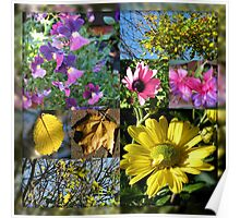 Autumn Leaves and Flowers Collage in Mirrored Frame Poster