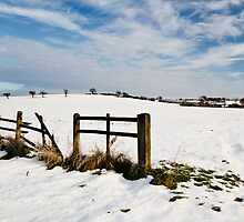 Woodham Under Snow. by barry jones