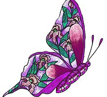 Iris Butterfly Illustration-2 by plunder