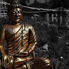Golden Buddha by Joanne  Bradley