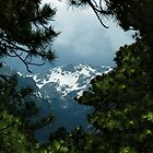 Mountain Frame by NatureGreeting Cards ©ccwri