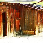 Shed by the Tracks by Lenore Senior