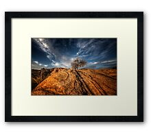 Tree Top Framed Print