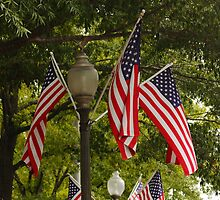 The Stars and Stripes by AnnDixon
