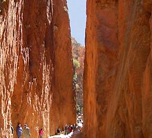 Standley Chasm near Alice Springs, Northern Territory,  Australia by Adrian Paul