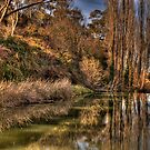 Reflections of Autumn - Rockley, NSW,Australia - The HDR Experience by Philip Johnson