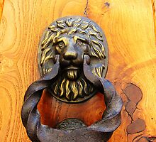 Lion Door knocker, Spain by buttonpresser
