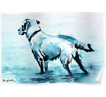 Dune Doggie Poster