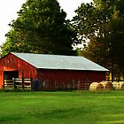 Olde Red Barn by Susan Blevins
