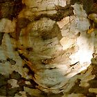 tree face by SUBI