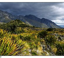 Tasman Valley Scenic by Robert Mullner