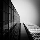 The Mirror World by Daniel Hachmann