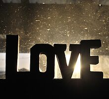 Love at First Set by Nearusearu