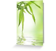 Bamboo with water reflection  Greeting Card