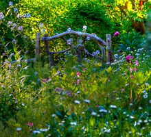 Rustic Garden Gate by Monica M. Scanlan