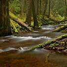 Panther Creek Landscape by Nick Boren