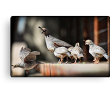 I Can Fly!!  Canvas Print