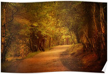 The Pathway. by Irene  Burdell
