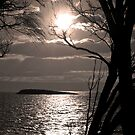 Holding up the sun by Jocelyn  Parry-Jones
