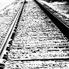 Something about the Railroad Tracks by Lenore Senior
