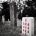 Chinese Cemetary - Beechworth, Victoria by Kat36