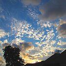 South Florida Sunset by Glenn Cecero