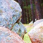 Face In Boulder by margaret walsh
