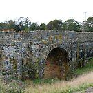 Spiky Bridge at Kerry Lodge by DEB CAMERON