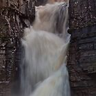 High Force, up close and personal! by mountainsandsky