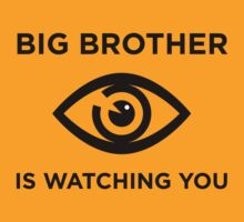 Big Brother is Watching You - Light by destinysagent