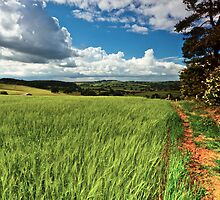 Everdon Hill by James  Key