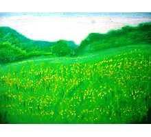Green Green Grass of Home Photographic Print