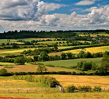 Newnham Hill by James  Key