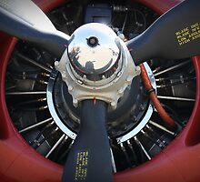 B-24 Prop by Tracy Freese