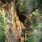 Mystical tree by Marie Luise  Strohmenger