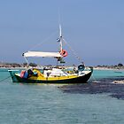 Local Fishing Boat at Elifonisi, Crete, Greece by Francis Drake