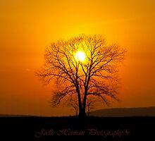 Sunset at Lone Tree by joelleherman