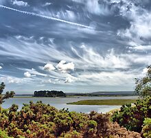 Poole Harbour Backwaters by Clive