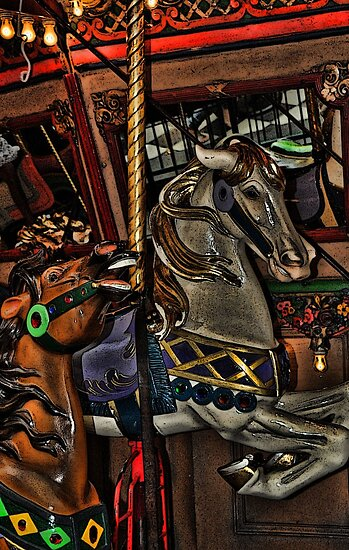Carousel at Riverchase Mall by lynell