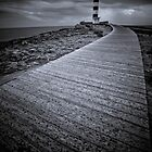 Puerto de Campos Lighthouse  by Jan  Postel
