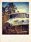 Faux Desoto Polaroid by Mark Will