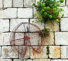 Lobster trap hanging on stone wall. Dubrovnik, Croatia by Sheldon Levis