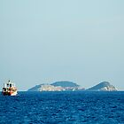 Small boat heading toward distant island in the Adriatic by Sheldon Levis