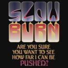 Slow Burn by Lee Edward McIlmoyle