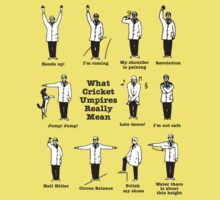 What cricket Umpire really means by tshirtbaba