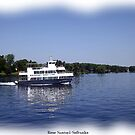 St. Lawrence Seaway/Thousand Islands #14 by Rose Santuci-Sofranko