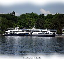 St. Lawrence Seaway/Thousand Islands #30 by Rose Santuci-Sofranko