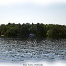 St. Lawrence Seaway/Thousand Islands #33 by Rose Santuci-Sofranko