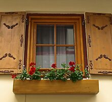 An Austrian Window by Lee d'Entremont