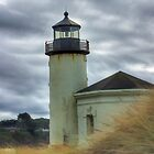 Coquille River Lighthouse, Oregon by Mary Ann  Melton